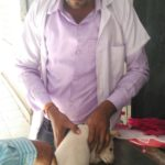 Animal Blood collection in Pinjore